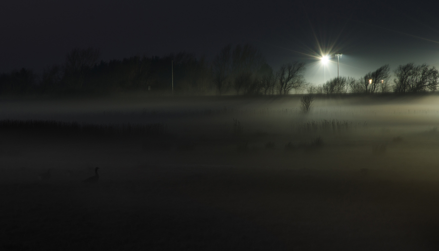 BdM_14_04_FB_Abendnebel.jpg